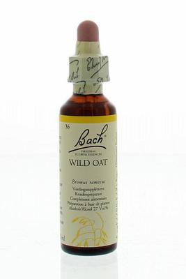 Bach Wild oat / dravik 20ml